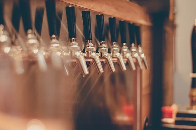 Meet Some Friends From Royersford Gardens for a Pint at Root Down Brewing