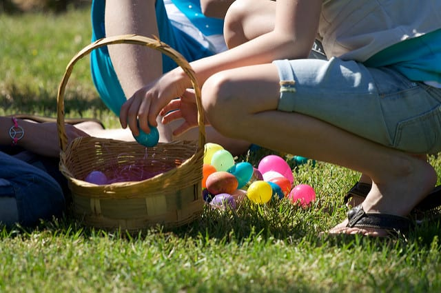 Hunt for Easter Eggs at Maple Acres Farm, Not Far From Norris Hills Apartments