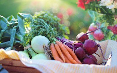 Downtown Wilmington Farmers Market: A Must-Shop Spot Near Greenview at Chestnut Run