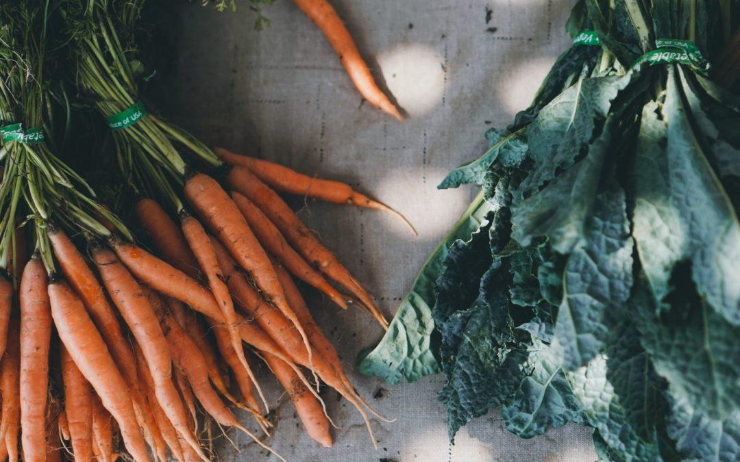 Open Near Stone Gate Woods: The Phoenixville Farmers' Market